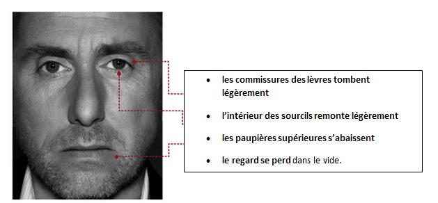 émotions - morphologie